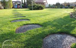 Szakszerű füvesítés kicsi és nagy kertekben, magánszemélyek és cégek számára egyaránt!