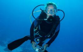 Megismerné a tengerek élővilágát testközelből?