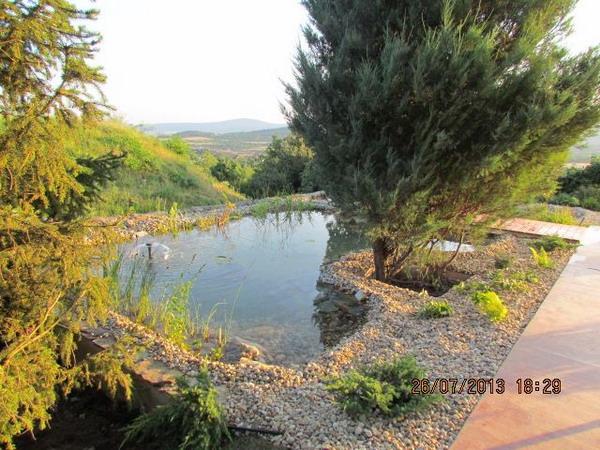 Egyedi kerti tavak számos célra