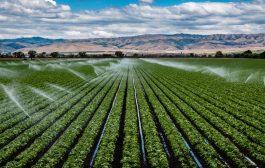 Tudjon meg többet a mezőgazdasági öntöző szivattyúkról!