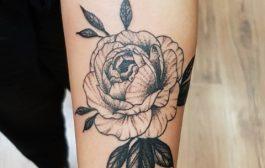 Győri tetoválószalont keresel?