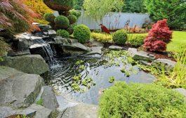Minőségi kerti tó és szökőkutas termékek